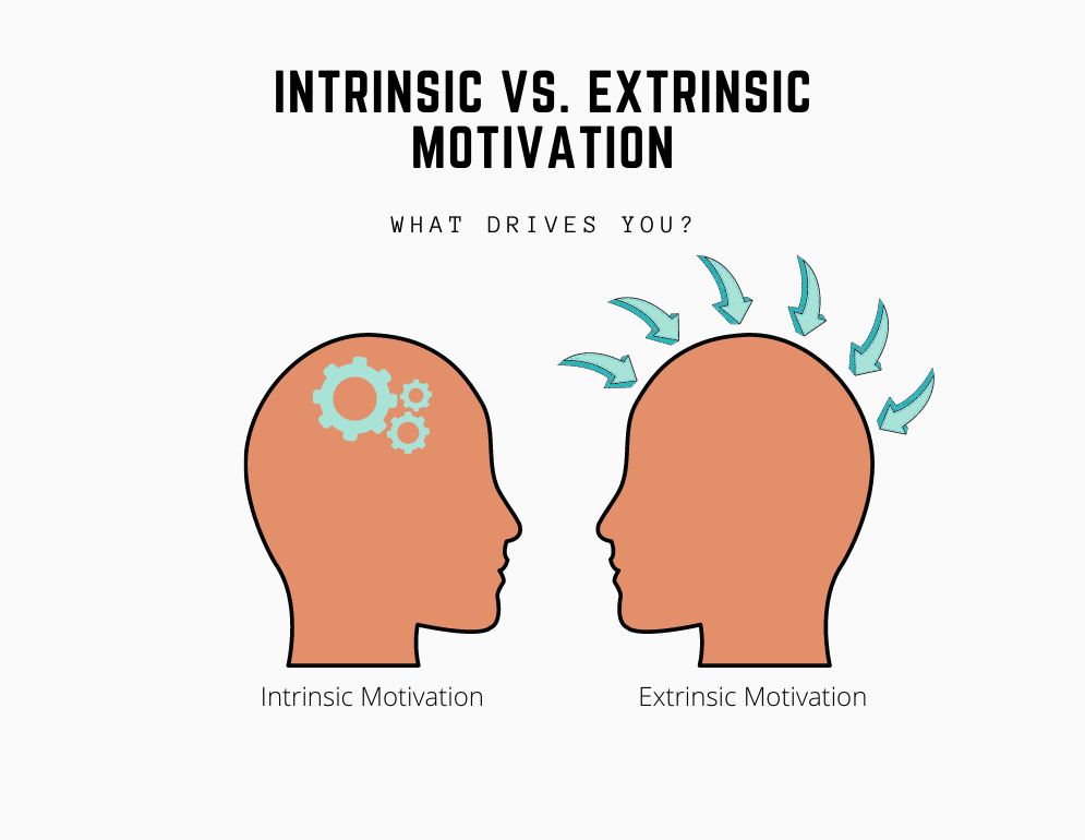 What motivates you? - intrinsic motivation and extrinsic motivation